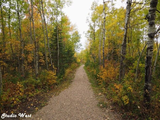 Greenwater Provincial Park