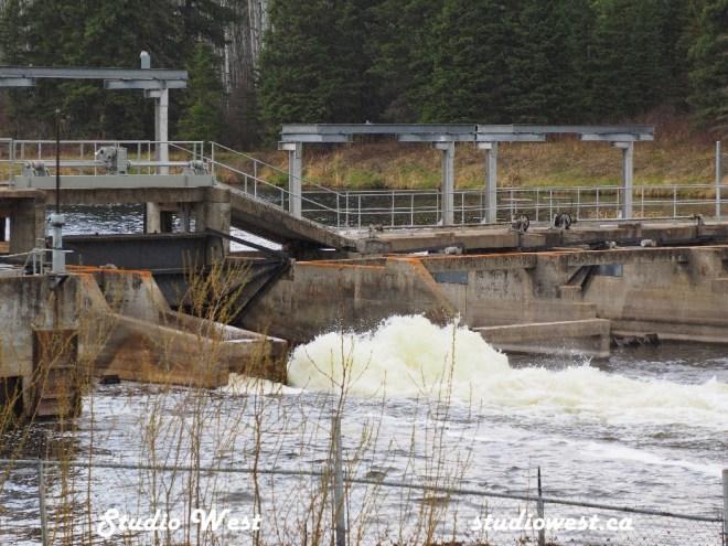 Cowan Dam site recreation