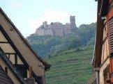 alzacja-zamek-studio-wina