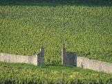 winnice Gavrey-Chambertine