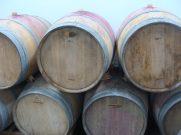 Winnica Jakubów - wino dojrzewa w dębowych beczkach