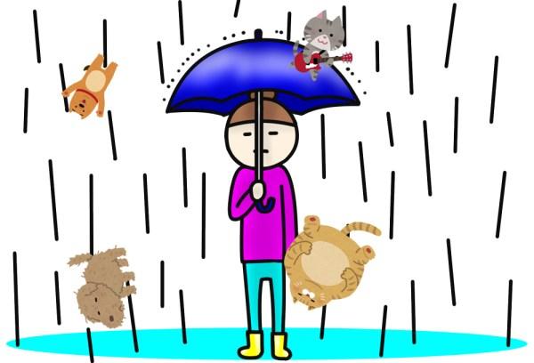 rain-cats-dogs