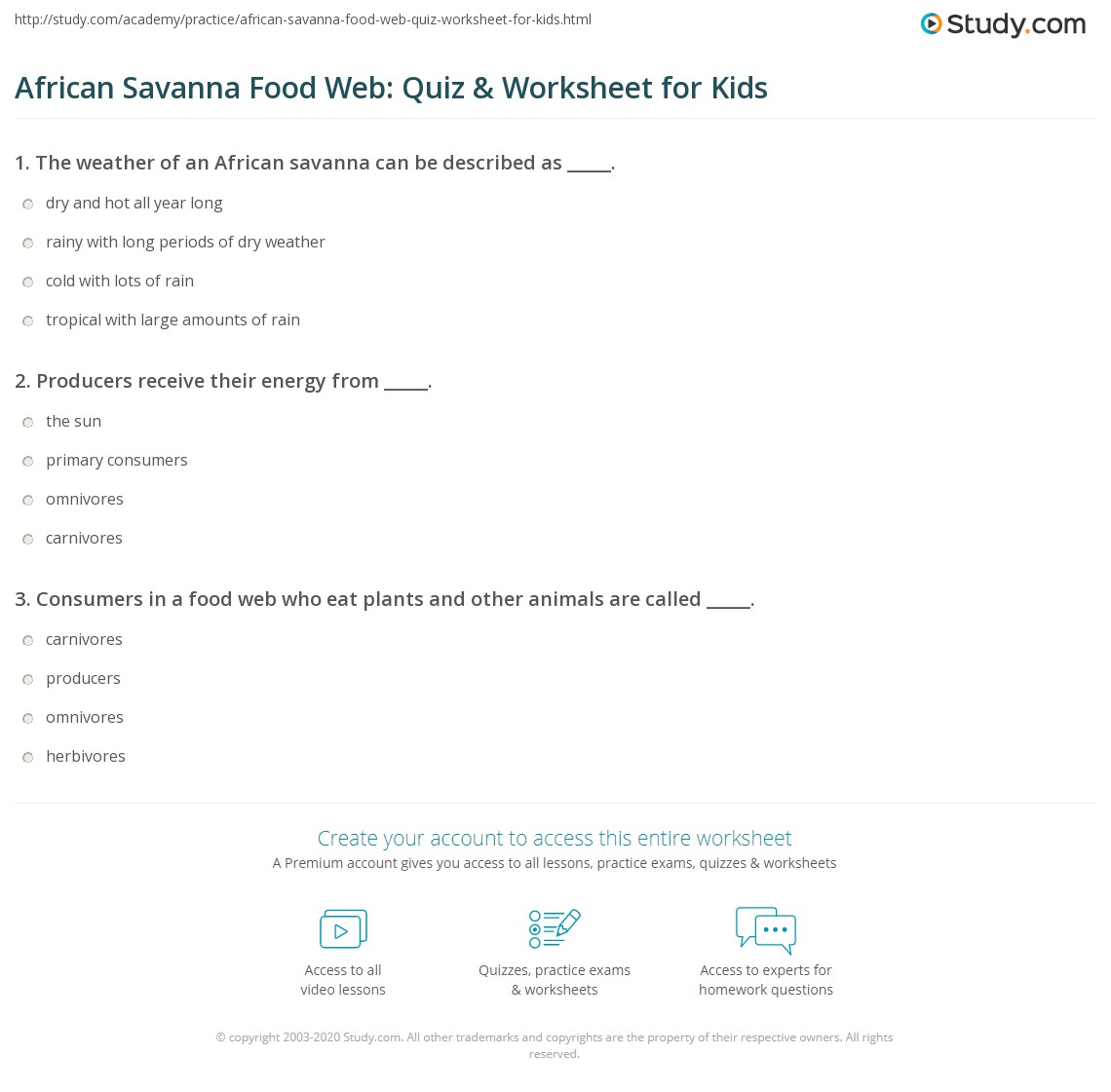 African Savanna Food Web Quiz Amp Worksheet For Kids