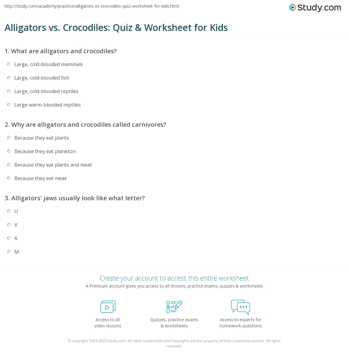 Alligators Vs Crocodiles Quiz Amp Worksheet For Kids