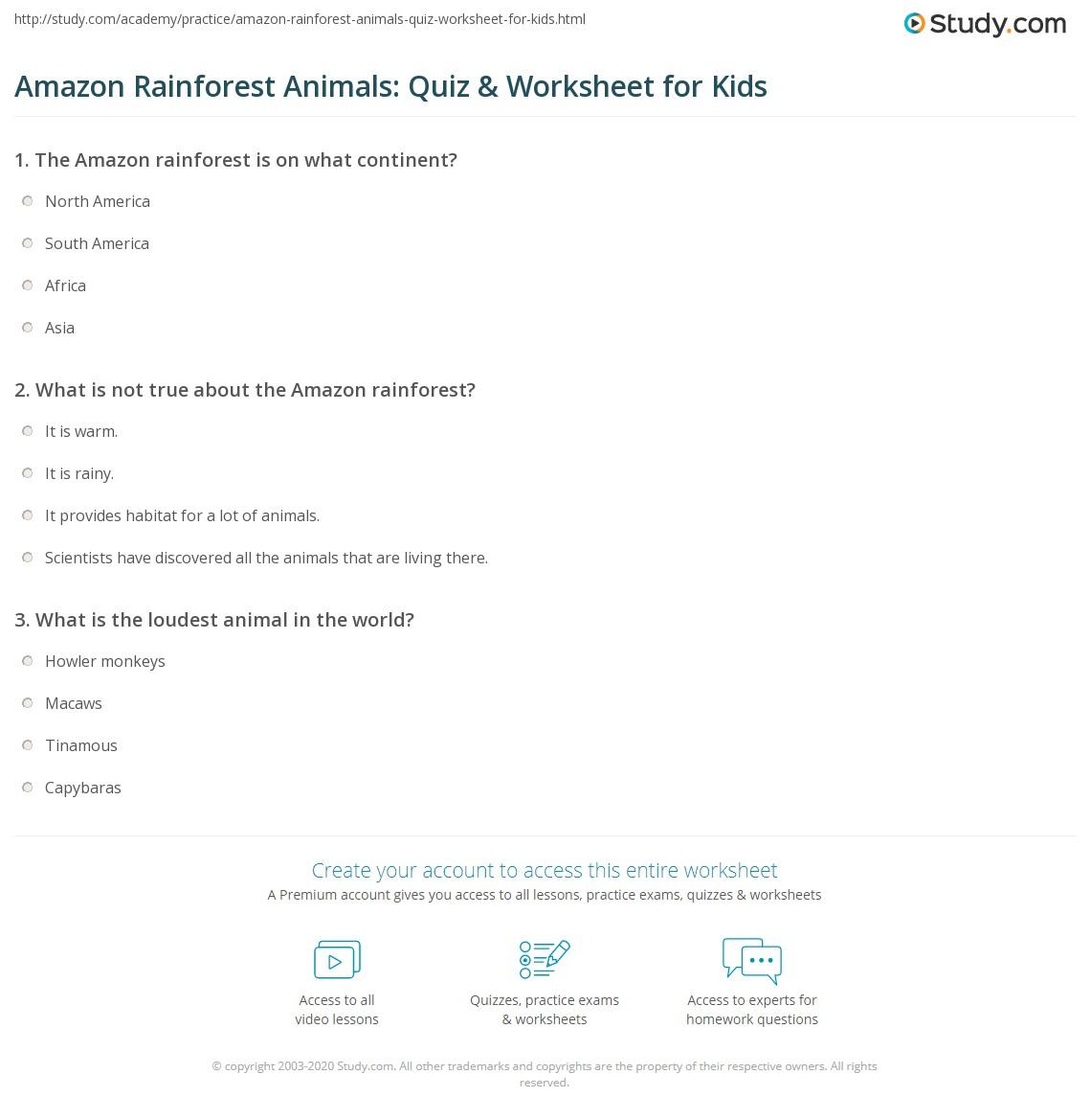 Amazon Rainforest Animals Quiz Amp Worksheet For Kids