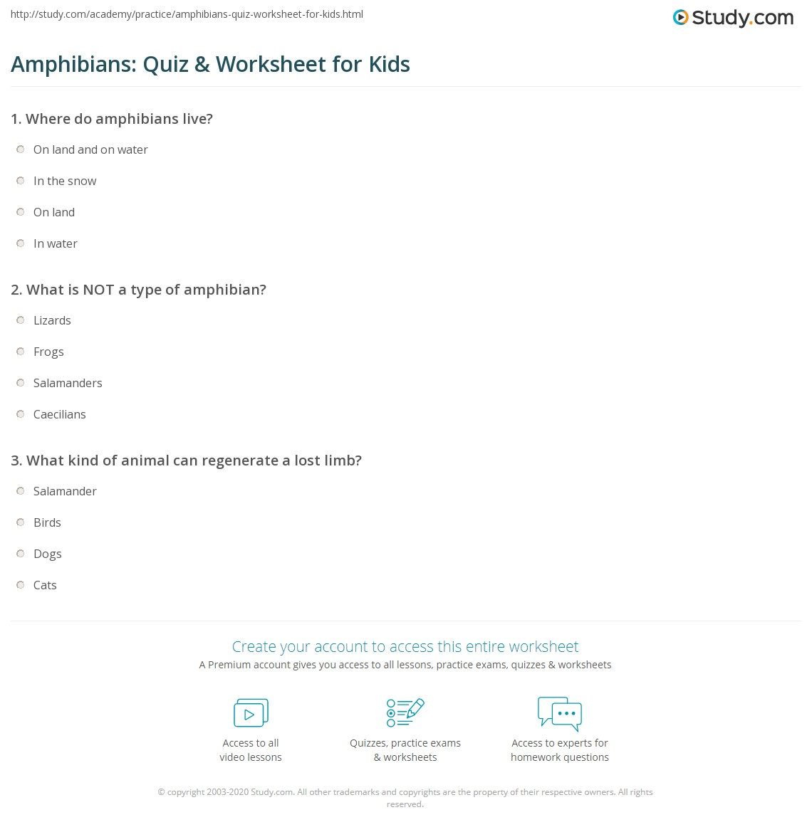 Amphibians Quiz Amp Worksheet For Kids