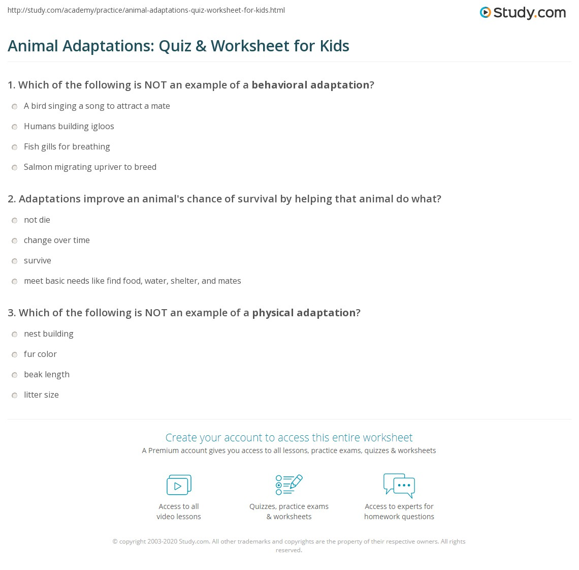 Animal Adaptations Quiz Amp Worksheet For Kids