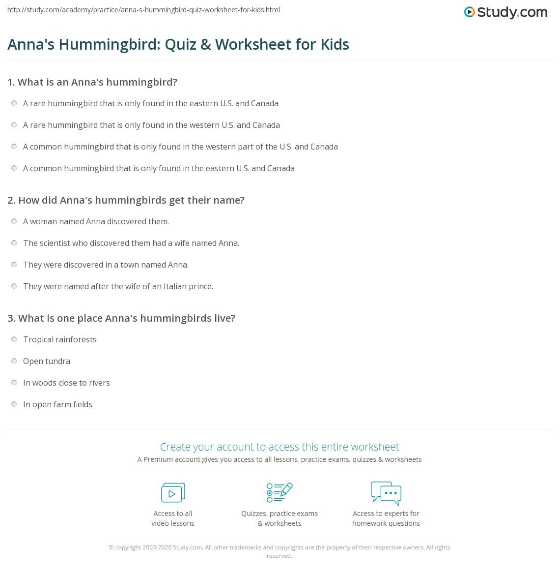 Anna S Hummingbird Quiz Amp Worksheet For Kids