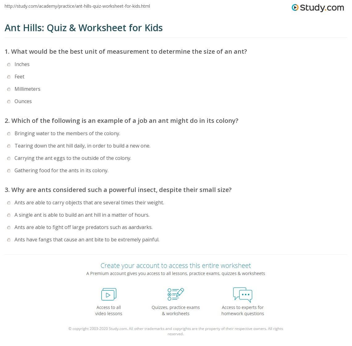 Ant Hills Quiz Amp Worksheet For Kids