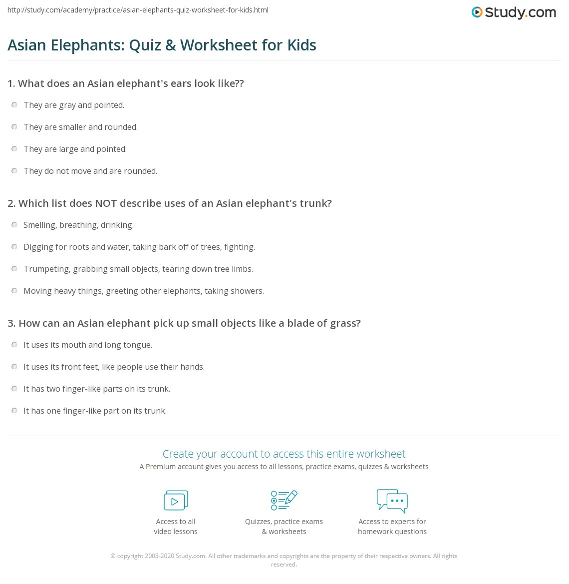 Asian Elephants Quiz Amp Worksheet For Kids