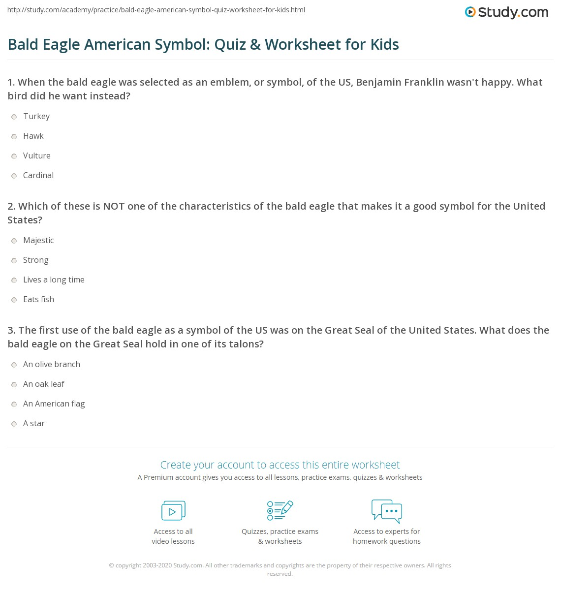 Bald Eagle American Symbol Quiz Amp Worksheet For Kids