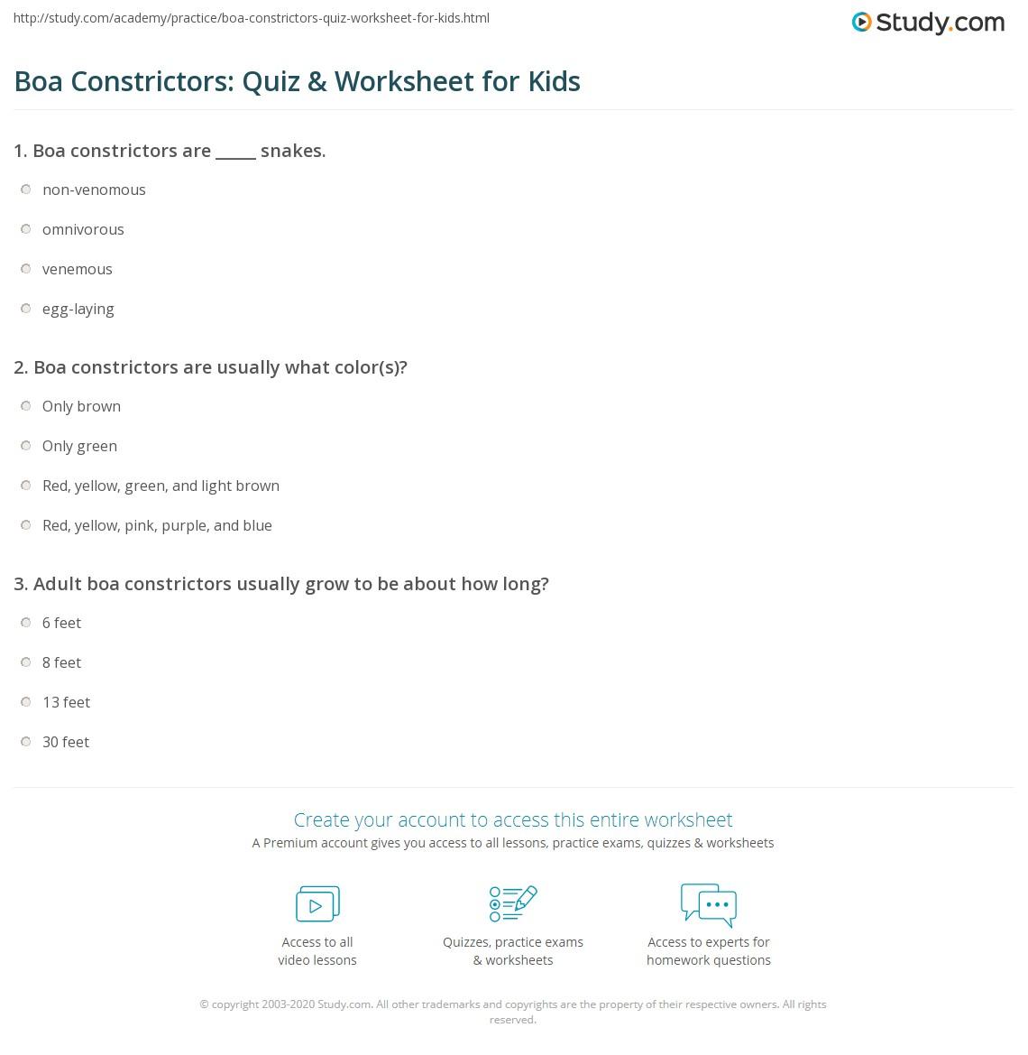 Boa Constrictors Quiz Amp Worksheet For Kids