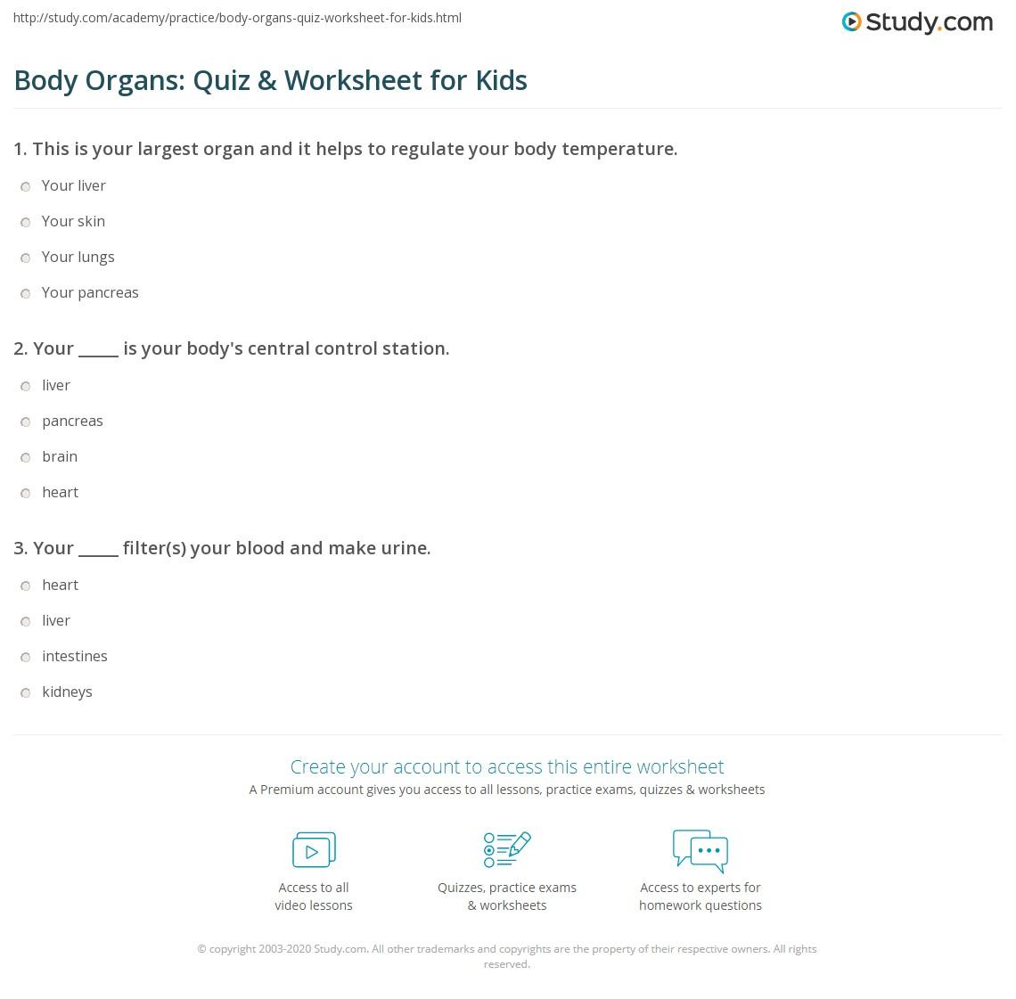 Body Organs Quiz Amp Worksheet For Kids