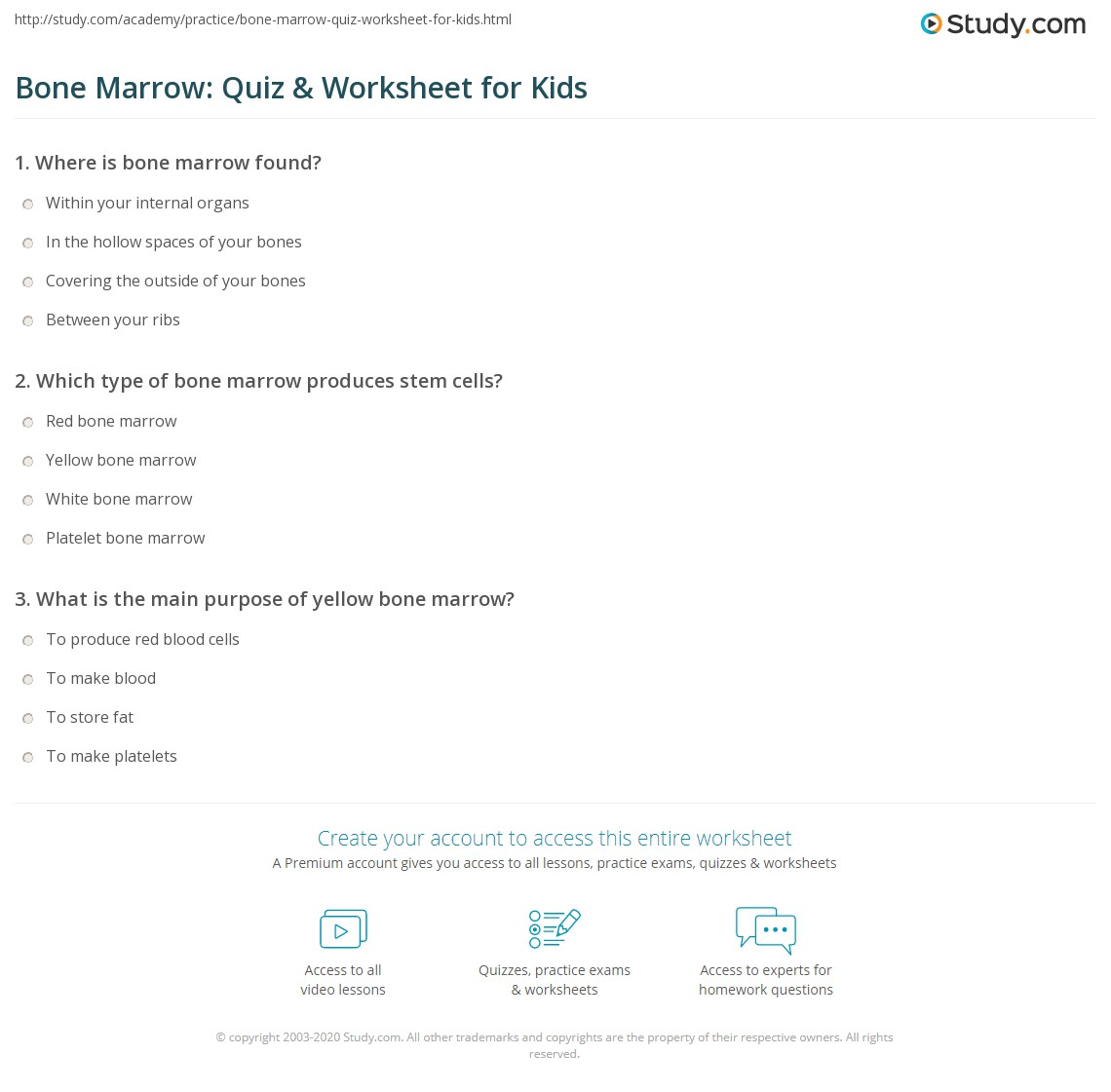 Bone Marrow Quiz Amp Worksheet For Kids