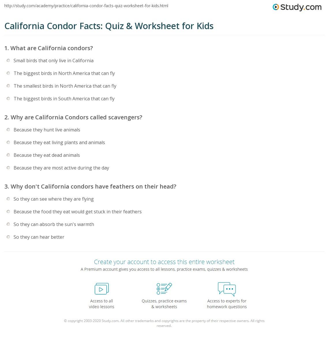 California Condor Facts Quiz Amp Worksheet For Kids