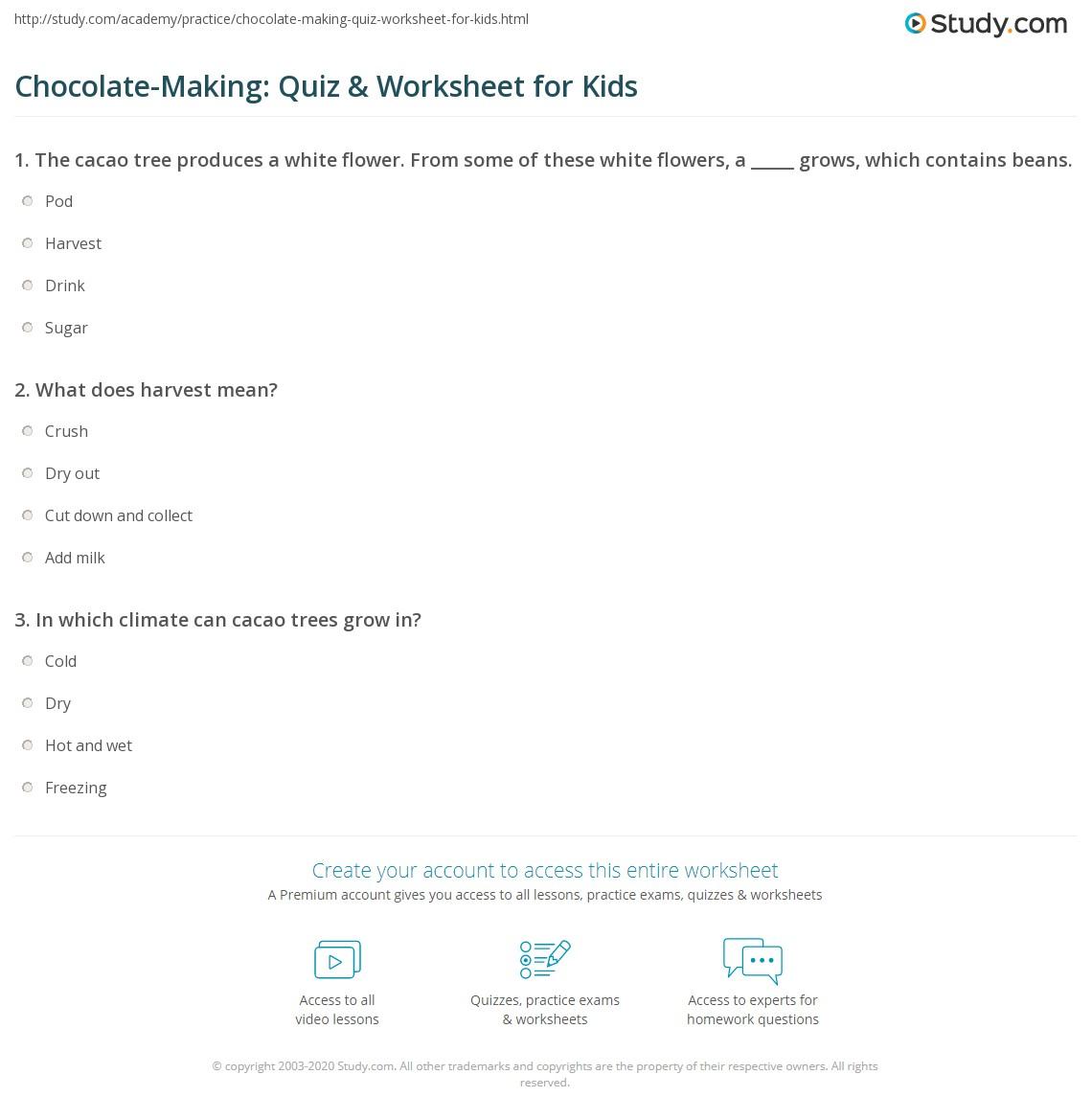 Chocolate Making Quiz Amp Worksheet For Kids