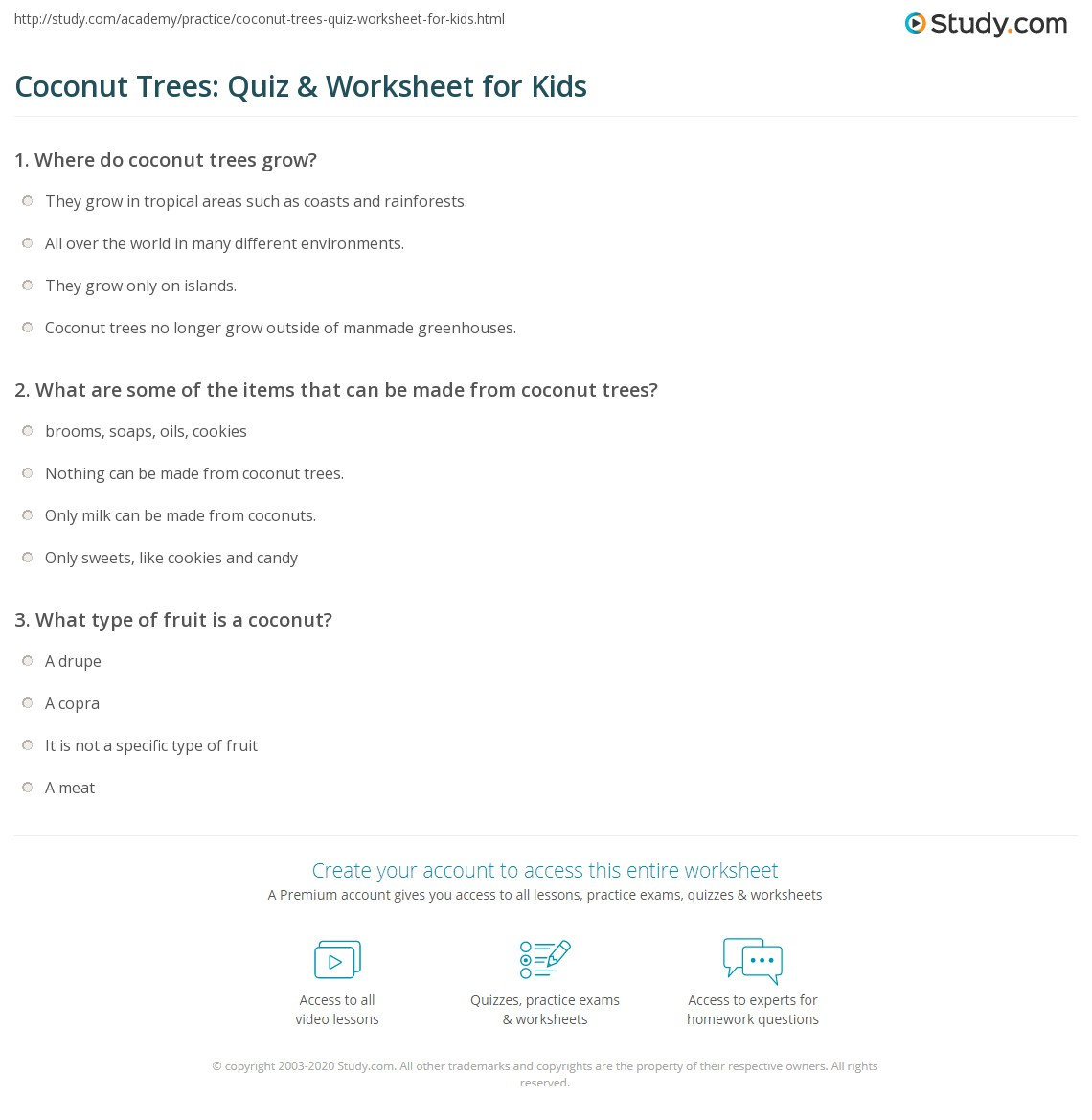 Coconut Trees Quiz Amp Worksheet For Kids