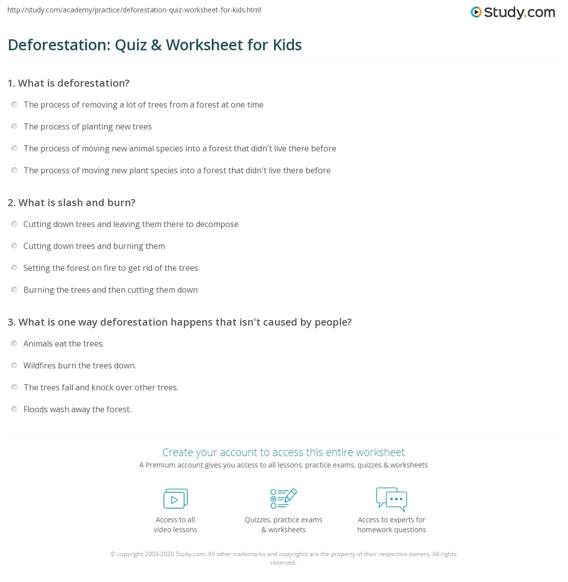 Deforestation Quiz Amp Worksheet For Kids