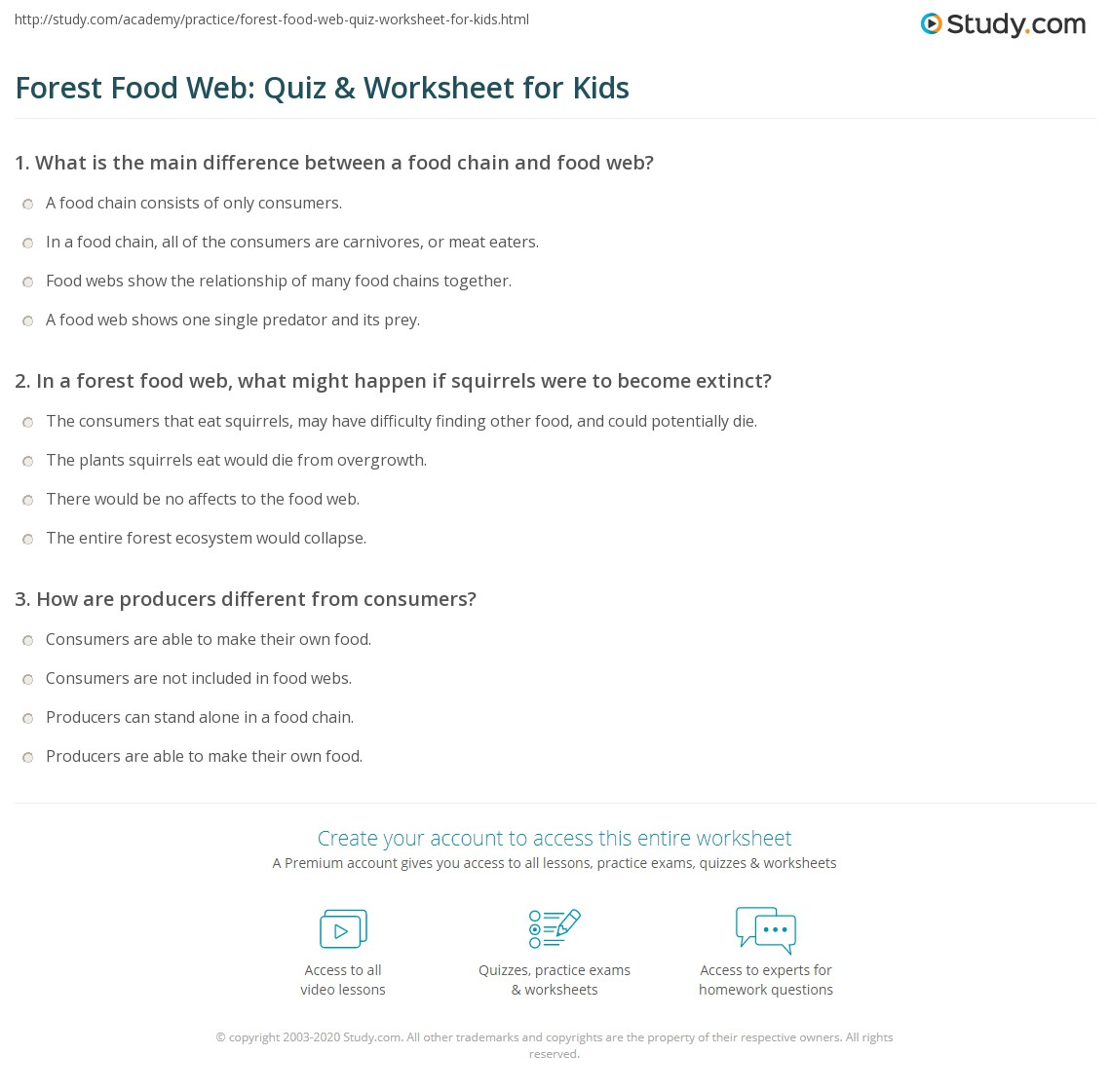 Forest Food Web Quiz Amp Worksheet For Kids