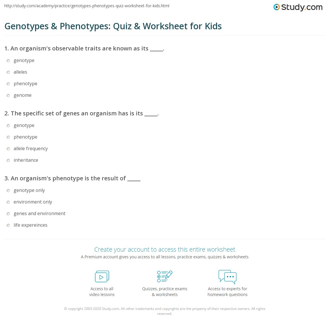 Genotypes Amp Phenotypes Quiz Amp Worksheet For Kids