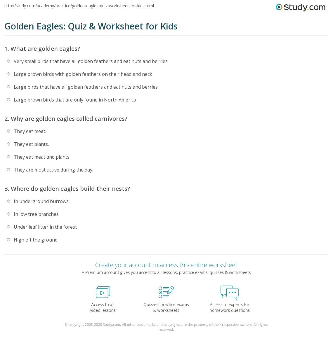 Golden Eagles Quiz Amp Worksheet For Kids