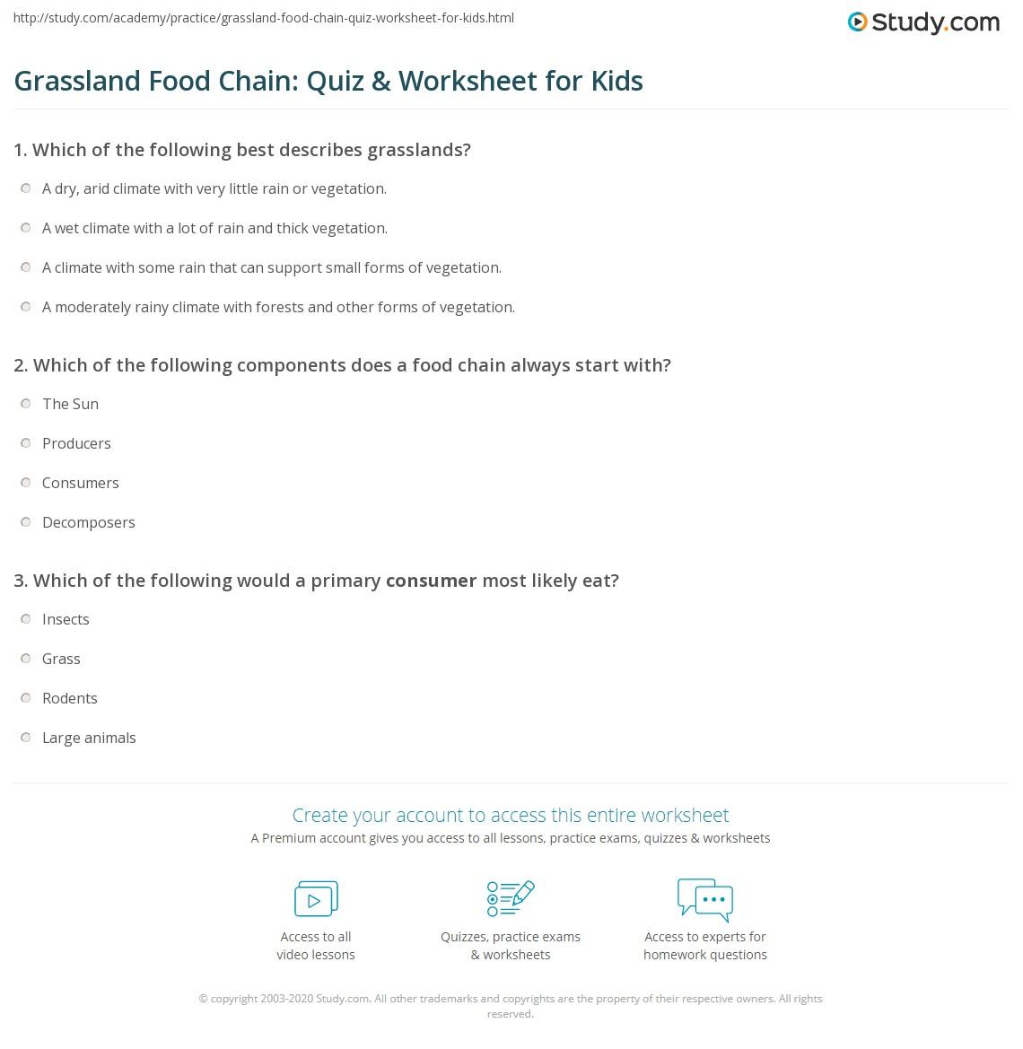 Grassland Food Chain Quiz Amp Worksheet For Kids