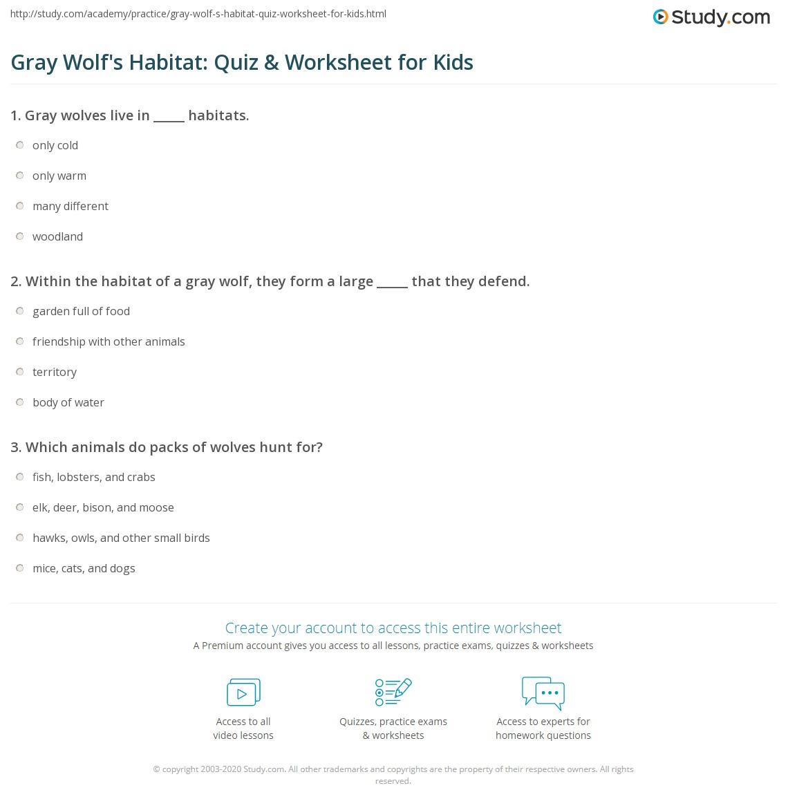 Gray Wolf S Habitat Quiz Amp Worksheet For Kids