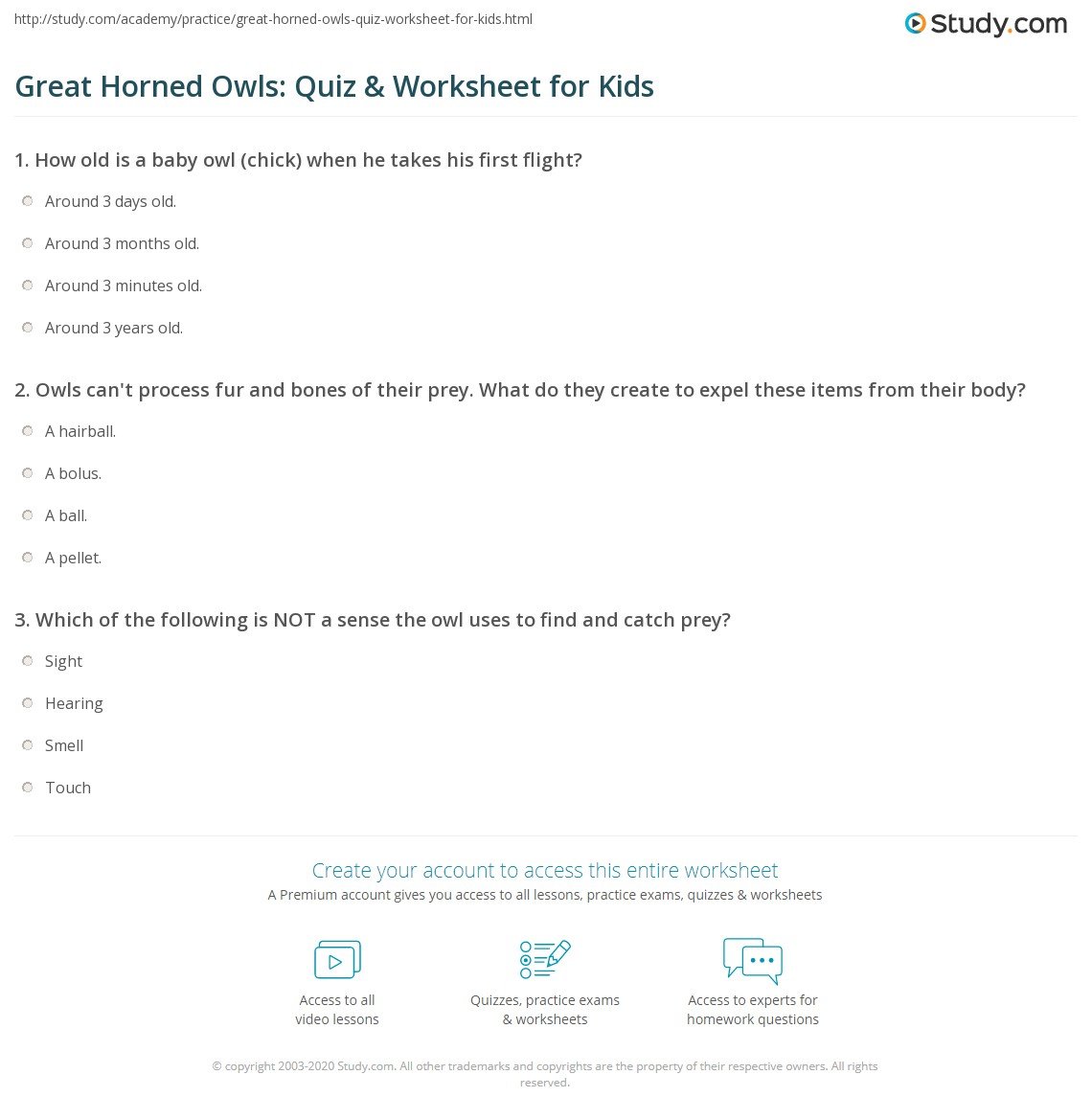Great Horned Owls Quiz Amp Worksheet For Kids