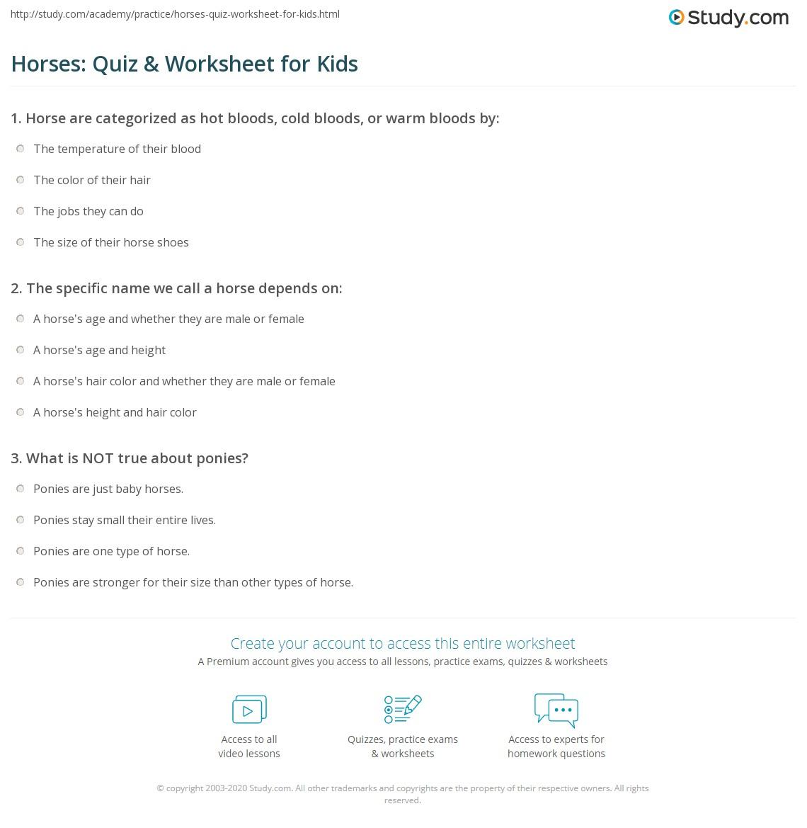 Horses Quiz Amp Worksheet For Kids