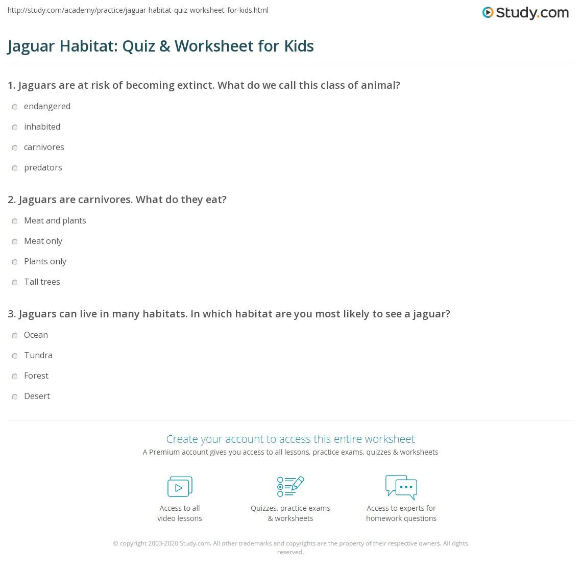 Jaguar Habitat Quiz Amp Worksheet For Kids