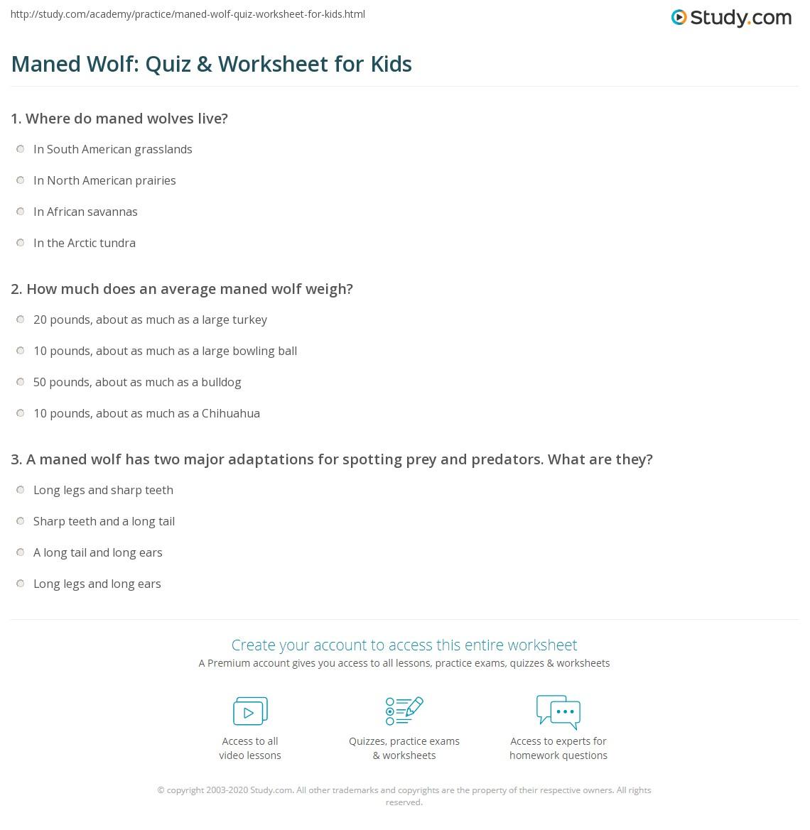 Maned Wolf Quiz Amp Worksheet For Kids