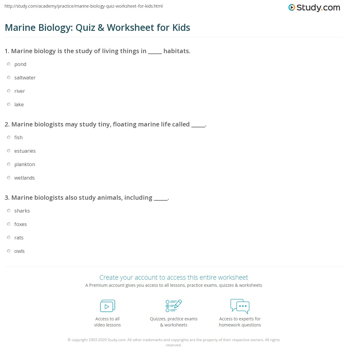 Marine Biology Quiz Amp Worksheet For Kids
