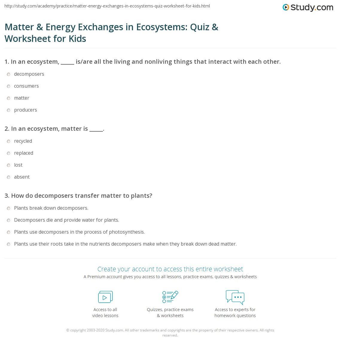 Matter Amp Energy Exchanges In Ecosystems Quiz Amp Worksheet