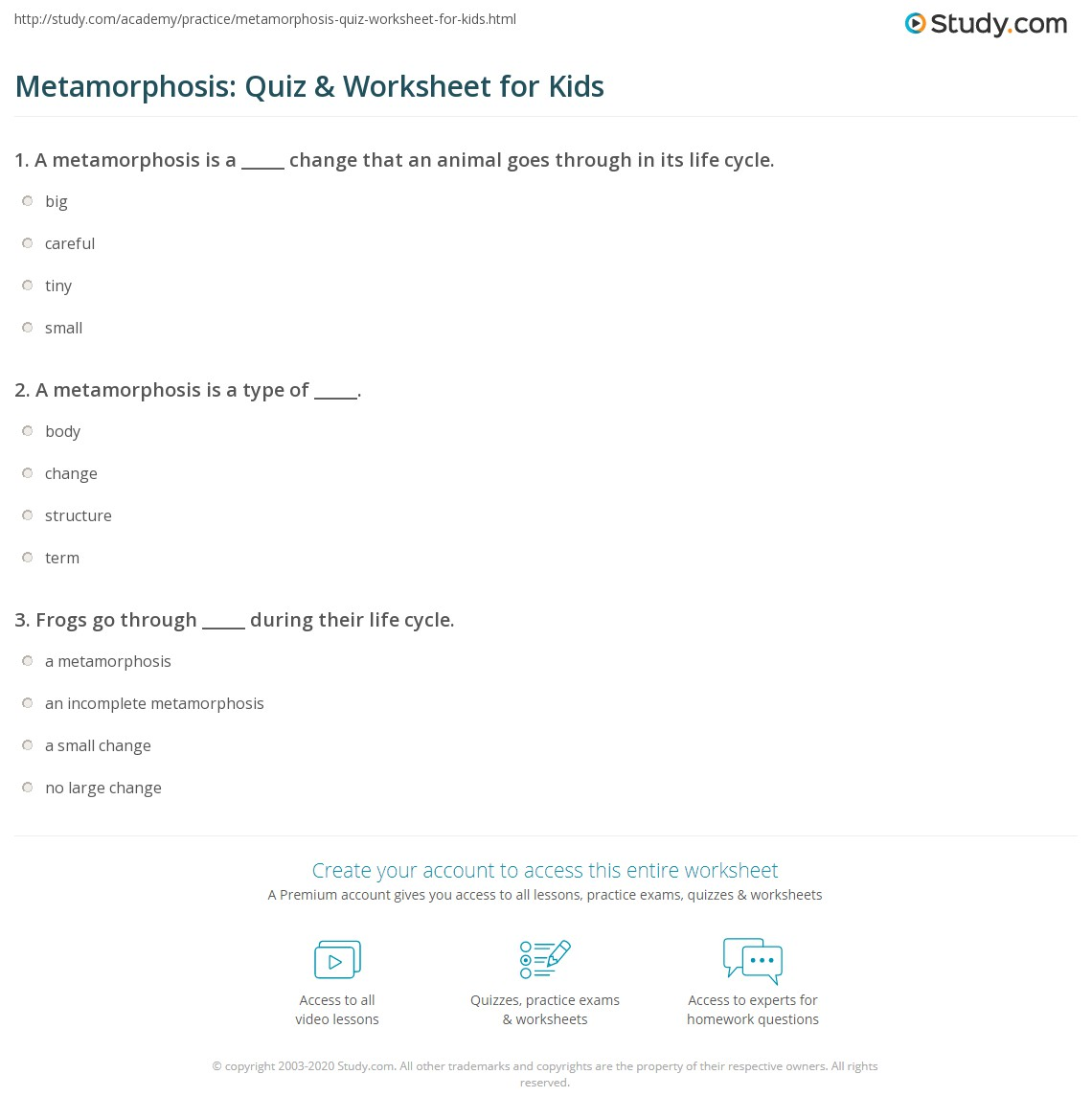 Metamorphosis Quiz Amp Worksheet For Kids