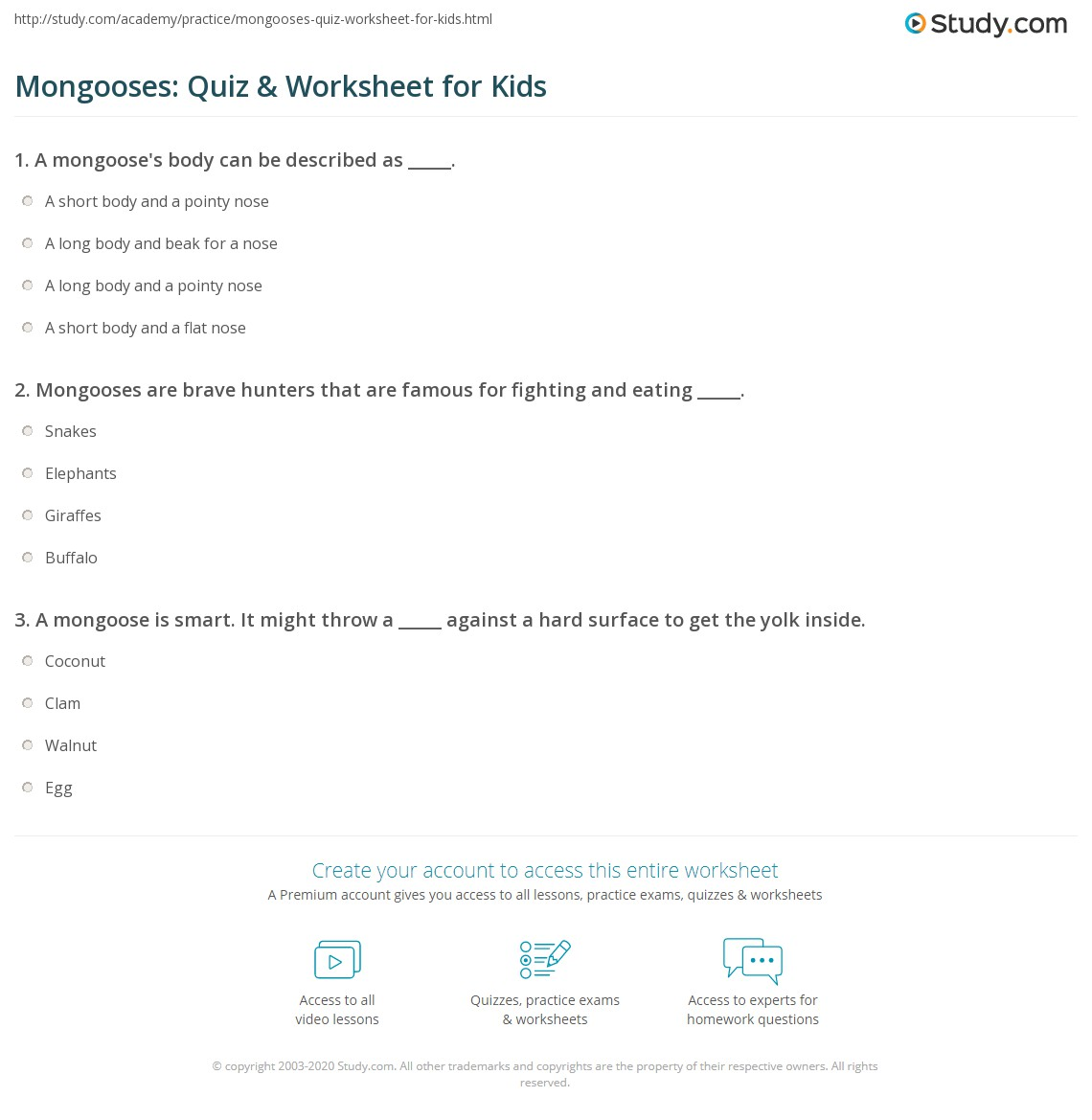 Mongooses Quiz Amp Worksheet For Kids