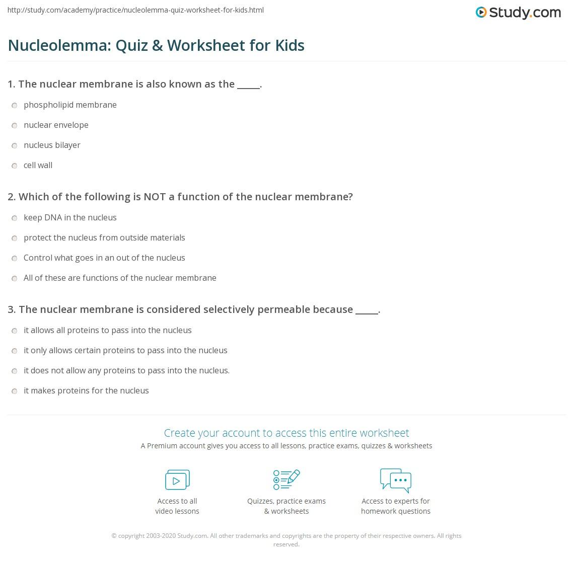 Nucleolemma Quiz Amp Worksheet For Kids