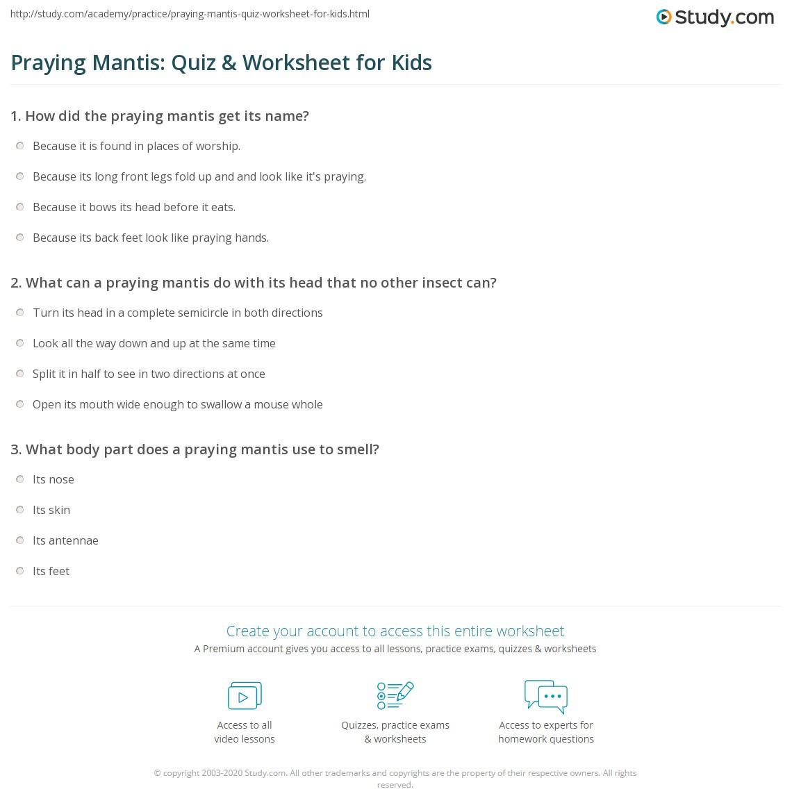Praying Mantis Quiz Amp Worksheet For Kids