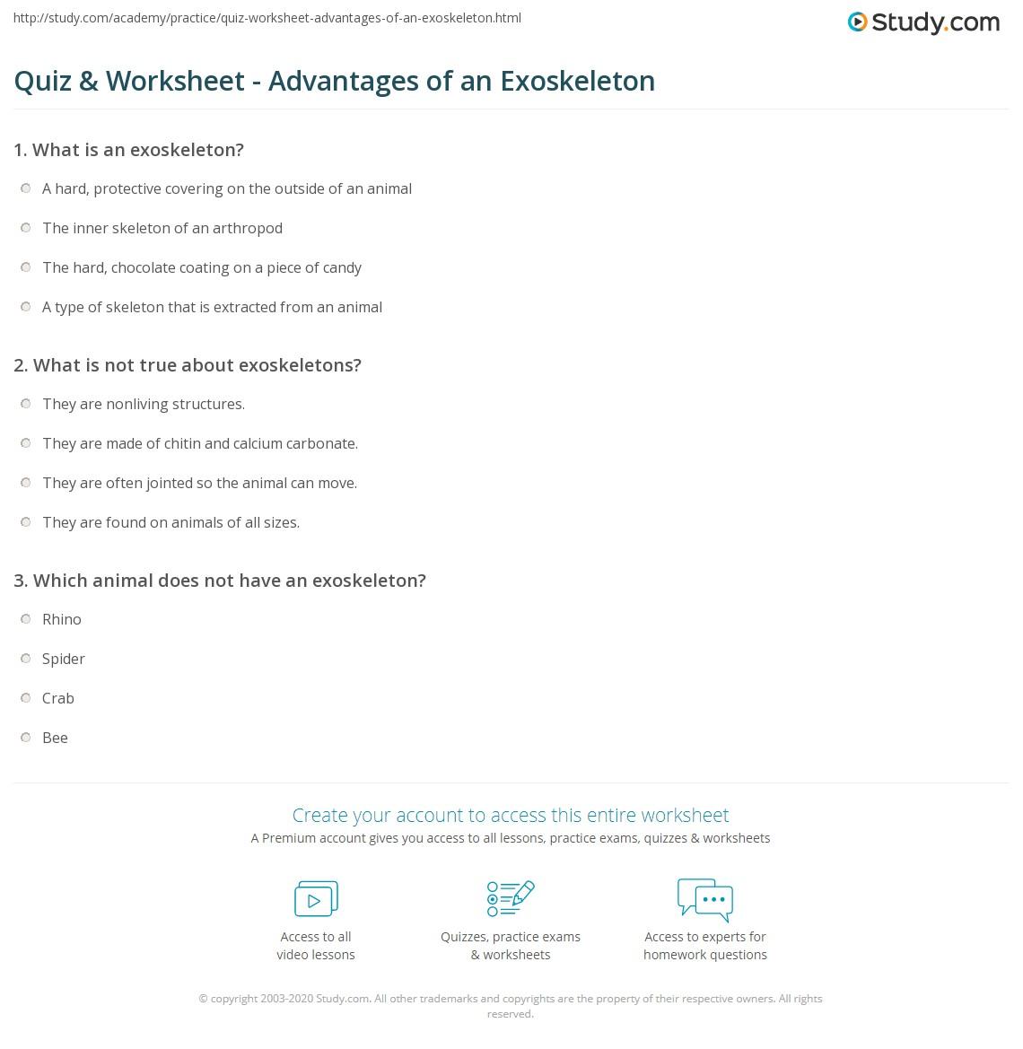 Quiz W Ksheet Dv Nt Ges Of N Exoskelet Study