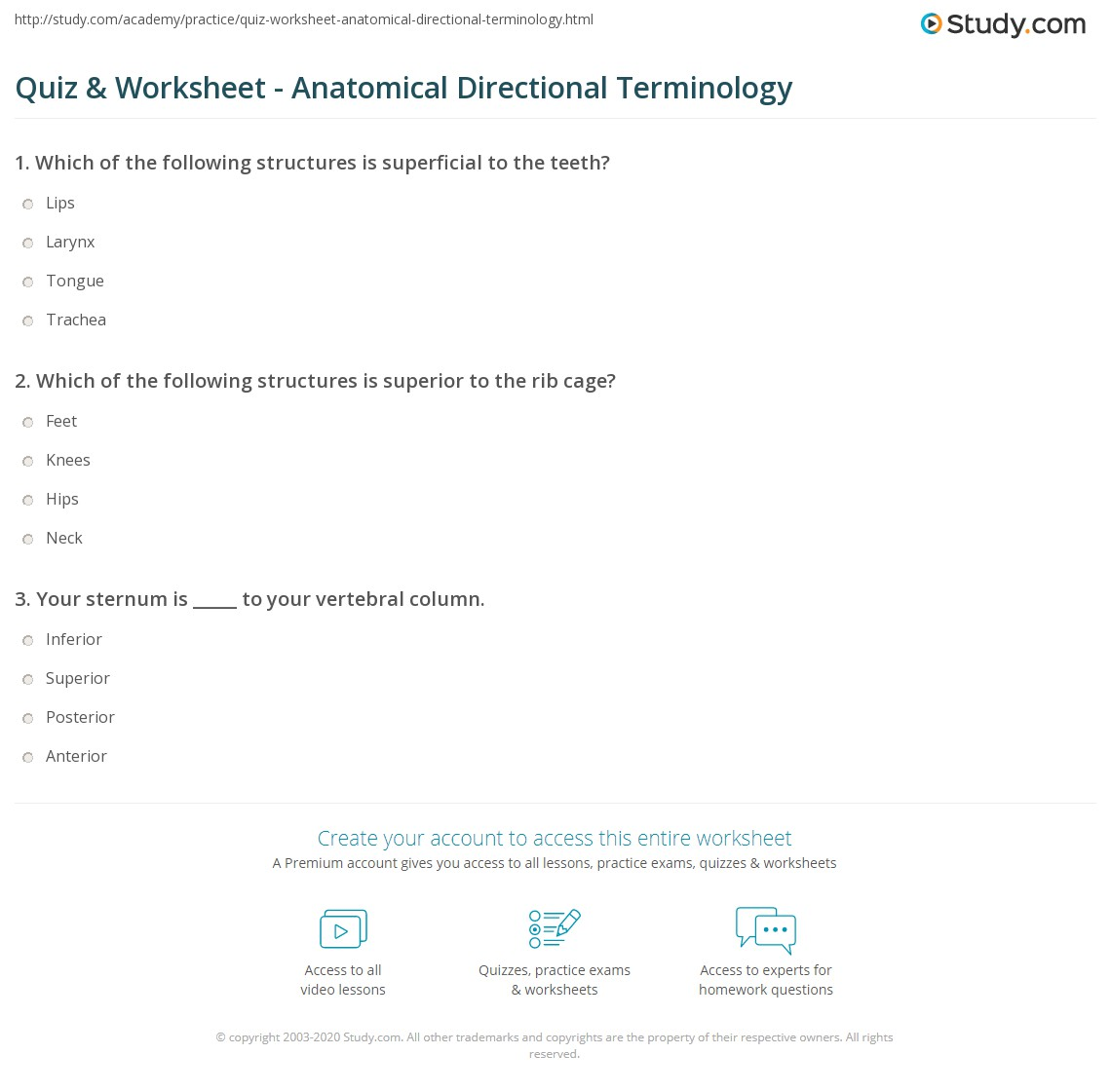 Directional Terminology Worksheet