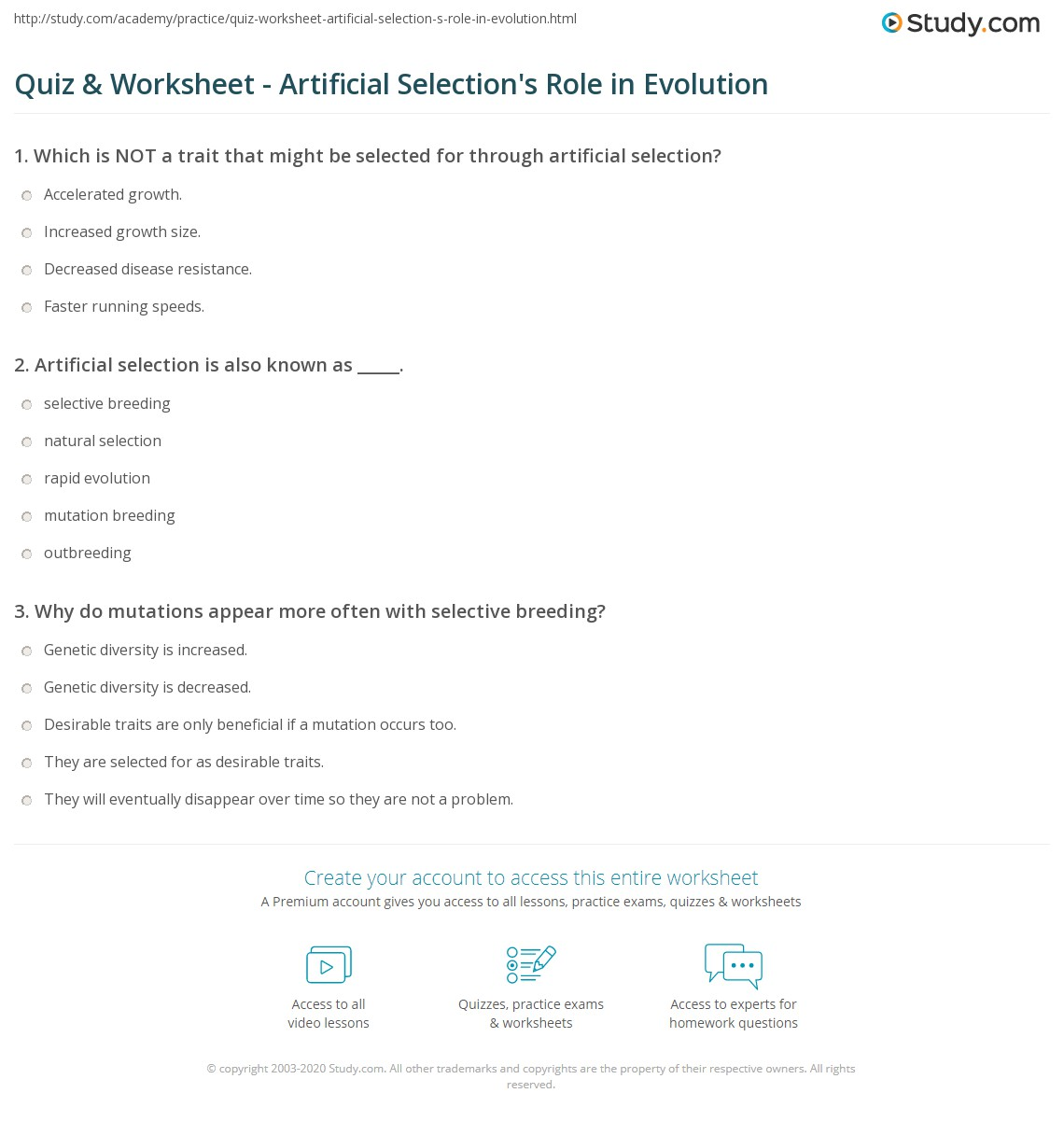 Worksheet Selective Breeding Worksheet Worksheet Fun Worksheet Study Site