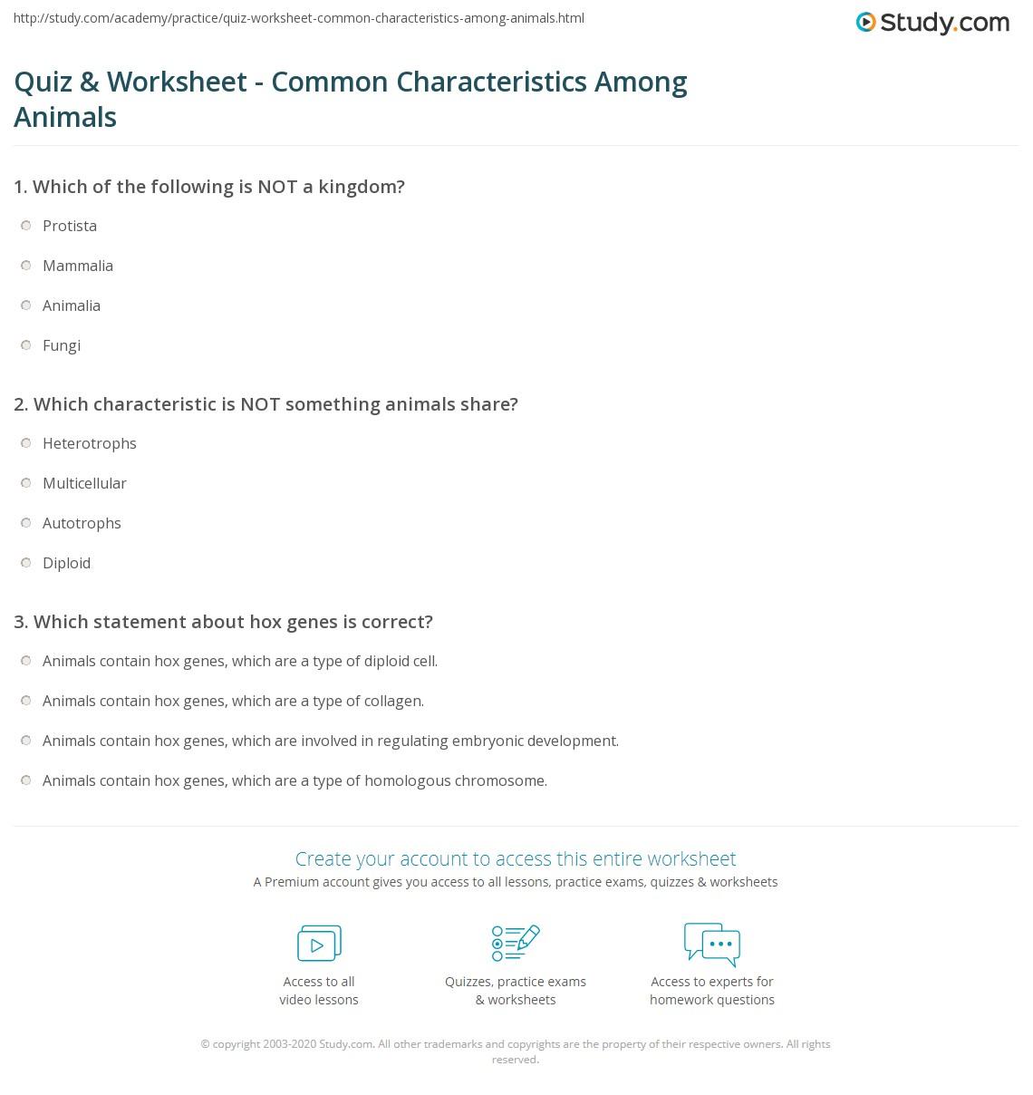 Worksheet Six Kingdoms Worksheet Worksheet Fun Worksheet Study Site