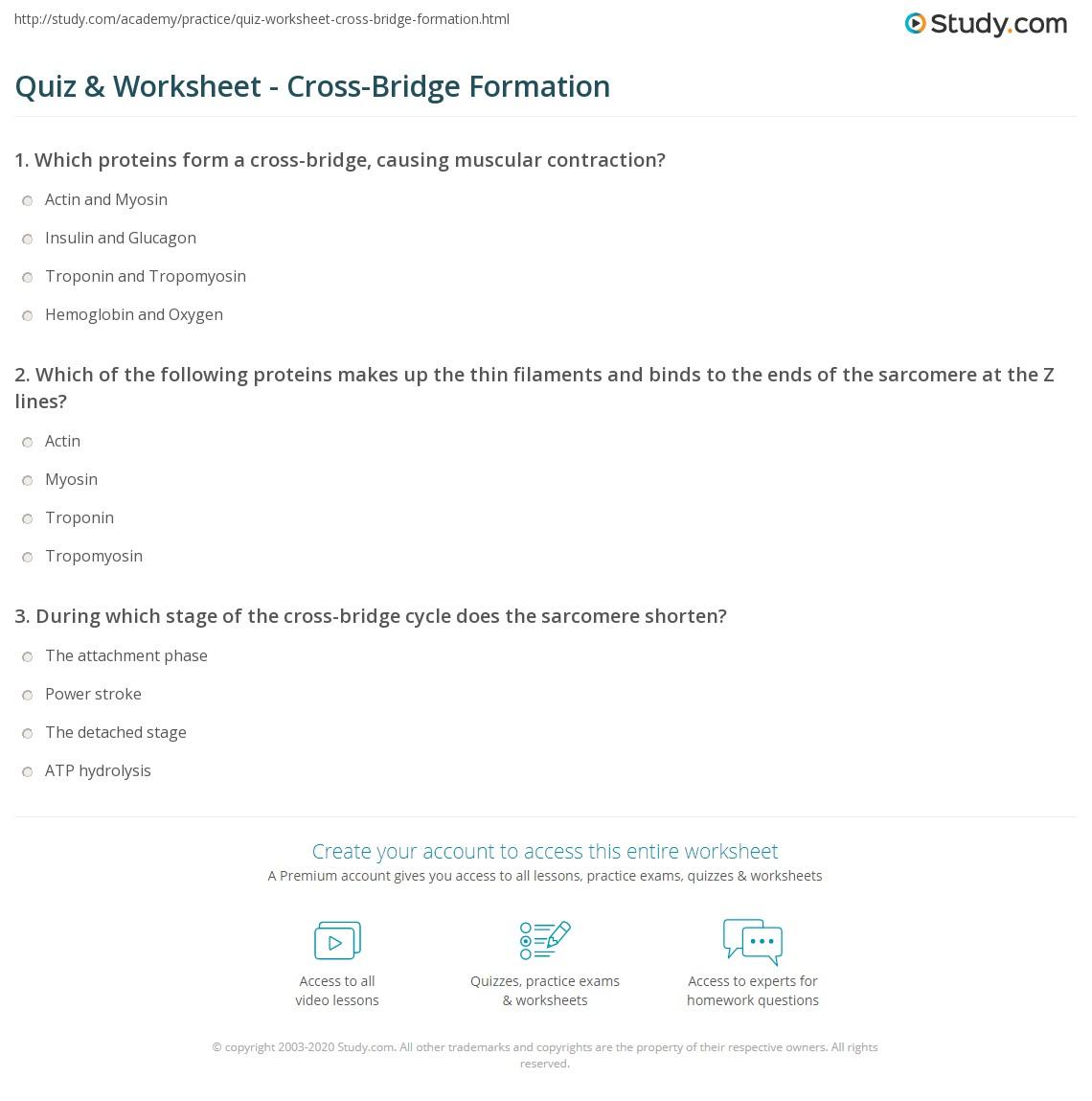 Worksheet Z Scores
