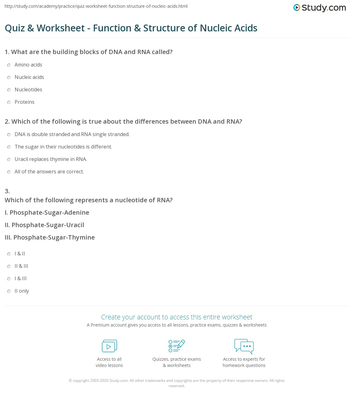 Nucleic Acids Worksheet Answer Key