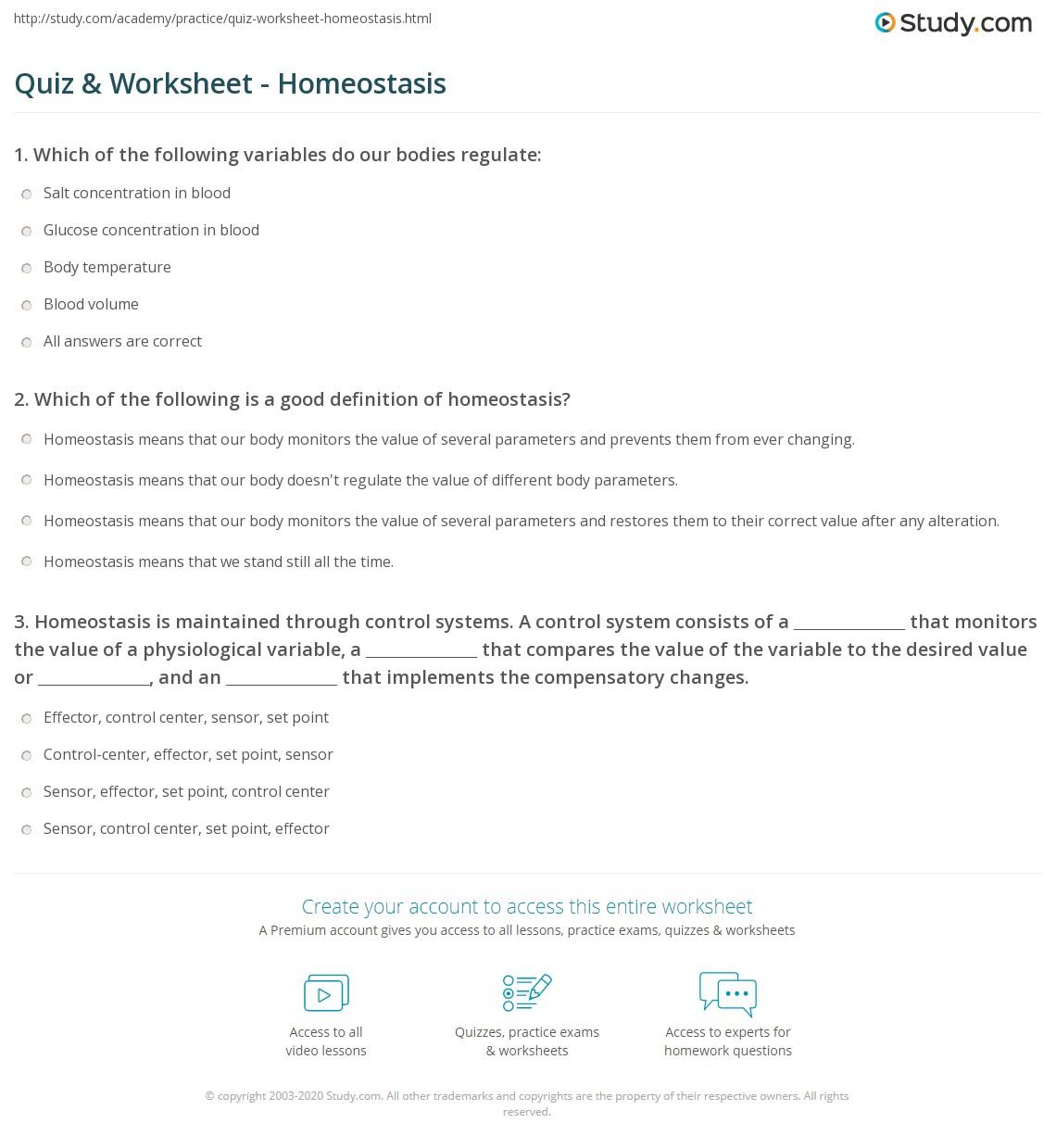 Printables Homeostasis Worksheet Messygracebook