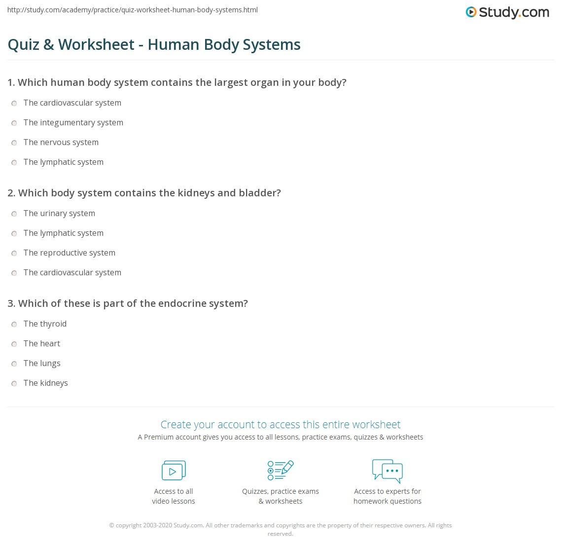 Worksheet Body System Worksheets Grass Fedjp Worksheet
