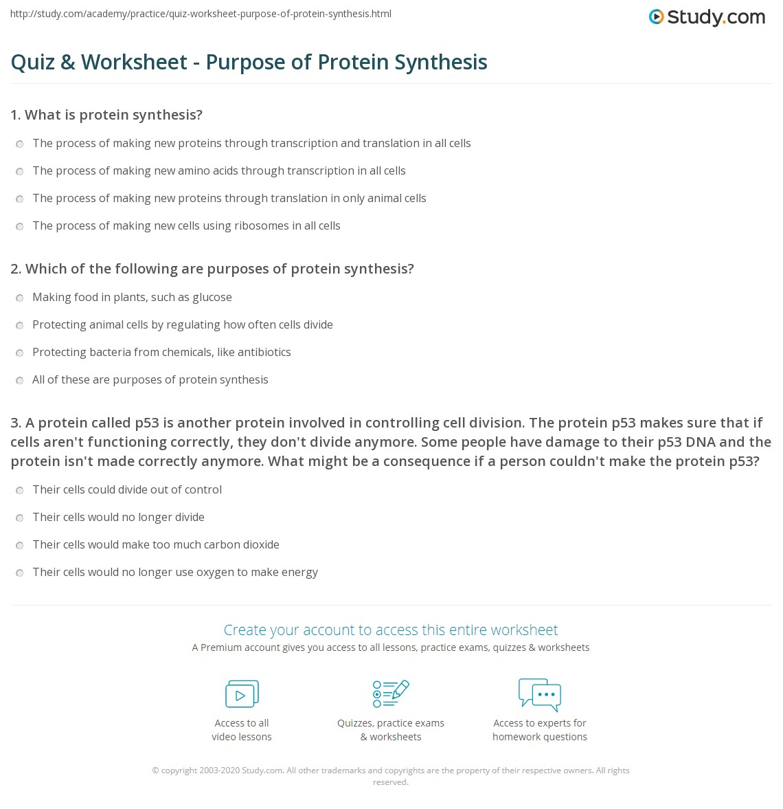 Dna And Protein Synthesis Worksheet