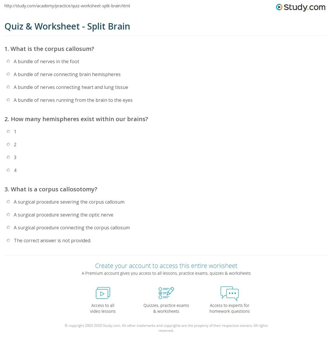 Split Worksheet Icon