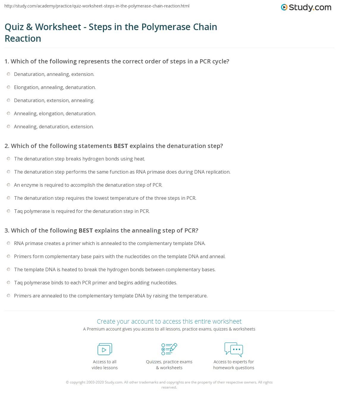 Pcr Worksheet