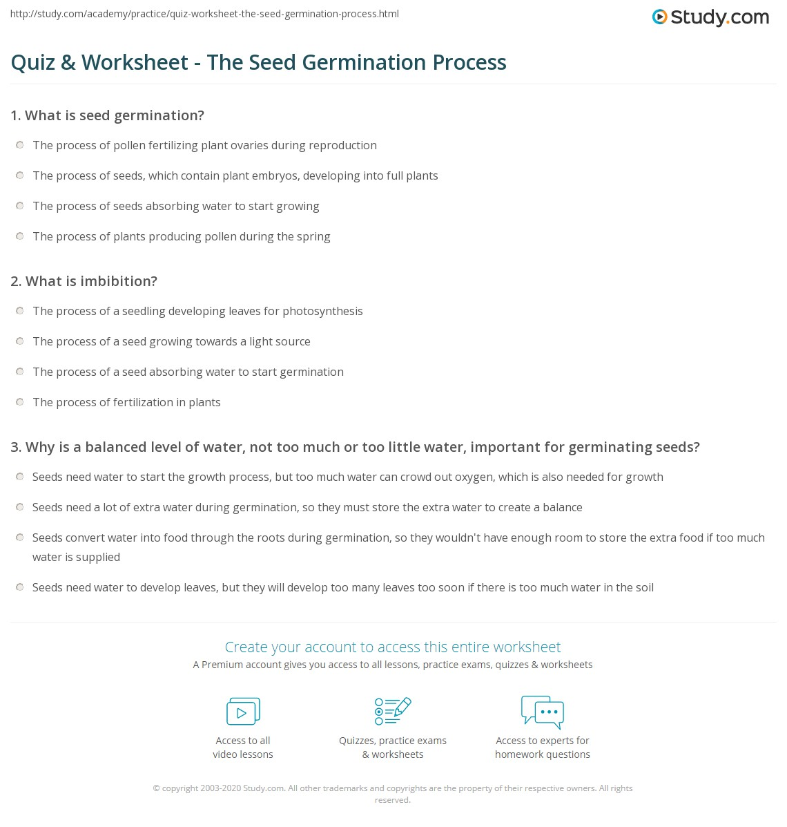 Stages Of Germination Worksheet