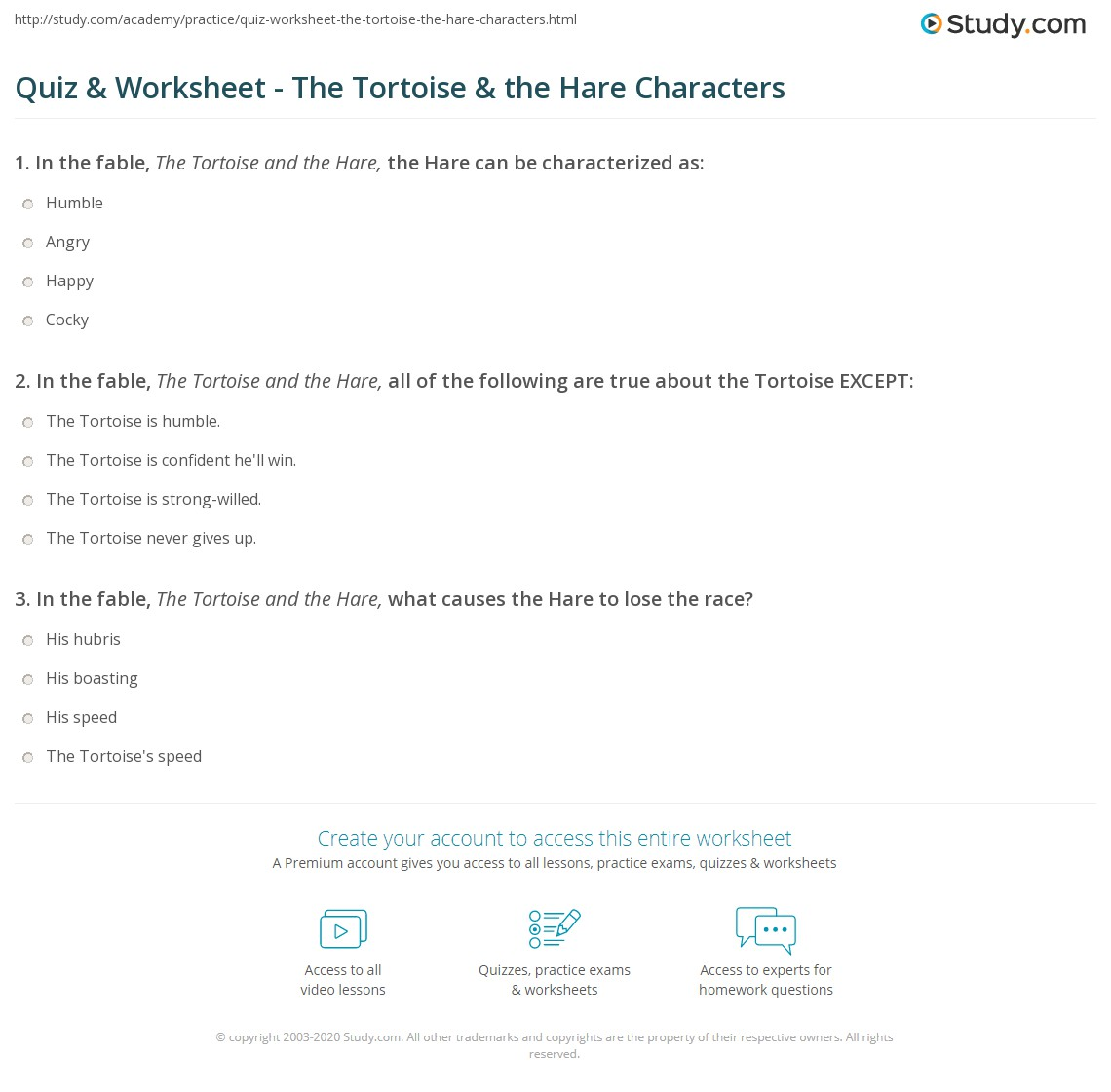 Tortoise Science Worksheet